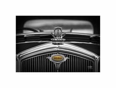 Wolseley 18HP (silver/halide) Tags: classic classiccar wolseley wolseley18hp historic vintage vintagevehicle mascot carmascot temperaturegauge mono monochrome blackandwhite bw d750 johnbaker jubileepool penzance penzancepromenade cornwall kernow chrome grill radiator radiatorgrill yesteryear dadsarmy