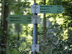 Just 3 km done - 10 km to go (schauplatz) Tags: badenwrttemberg deutschland schwbischealb sommer wanderung summer germany wald forest dreifrstensteig hiking heuberg schild wegweiser sign signpost guidepost directions
