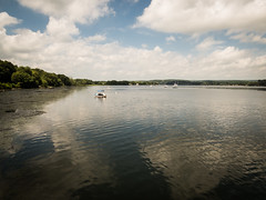 Looking north from Deep River Landing (hickamorehackamore) Tags: 2016 ct ctriver connecticut connecticutriver deepriver deepriverlanding summer