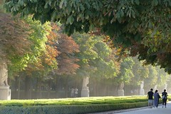 As the sun goes down - Retiro Park, Madrid (pompey shoes) Tags: madrid spain espana retiro park trees dusk twilight paths hedges green light couple people statues