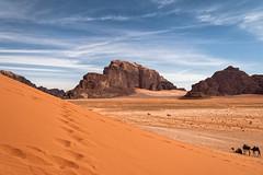 Les couleurs du Wadi Rum (Lucille-bs) Tags: moyenorient jordanie wadirum dsert sable roc rocher dromadaire immensit paysage nature canonflickraward