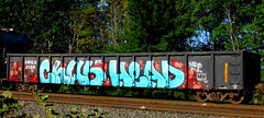 chub - head (timetomakethepasta) Tags: chub head wge dtt freight train graffiti d30 art gondola amgx yaeo