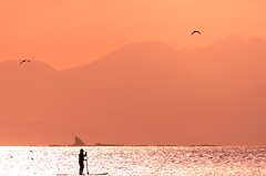 (**sione**) Tags: sunset sea sky seascape bird silhouette pentax  shonan