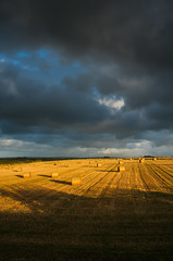 Field of gold (snowyturner) Tags: light field rain clouds landscape gold cornwall shadows hay bales stmerryn