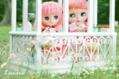 strawberryfields (launshae) Tags: pink strawberry biscuit blythe francoise dainty ananassa middie launshae