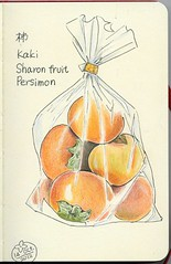 2012_10_14_kaki_01 (blue_belta) Tags: autumn orange art fall moleskine fruits japan sketch drawing  japanesefood persimmon   coloredpencil kaki     sharonfruit