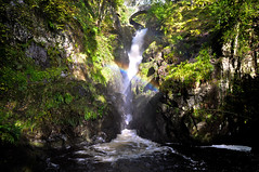 Aira Force (wilkie,j ( says NO to badger cull :() Tags: light landscape rainbow nikon lakedistrict waterfalls cumbria nationalparks nationaltrust nationalgeographic airaforce ullswater scenicwater sceniclandscape
