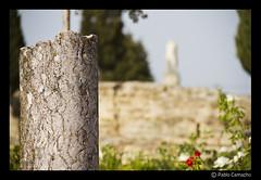 IMG_1729 (Churruk) Tags: azul sevilla árboles ruinas cielo desenfoque romana piedras itálica olétusfotos flickrstruereflectionlevel1