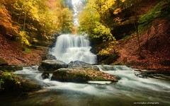 it's lovely here in decew after thanksgiving (Rex Montalban Photography) Tags: autumn fall waterfalls hdr decew nikond7000 rexmontalbanphotography