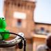 Biking frog!
