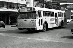 Leyland Worldmaster (railfan3) Tags: park old bus classic buses vintage metro south transport australia down run trust adelaide redwood sa oldtimers 1979 tramway metropolitan sta flindersstreet leyland 543 mtt bussen 3door worldmaster 7913 publict adelaidebus