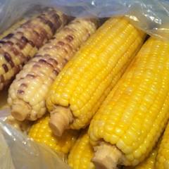 ข้าวโพดต้ม | Steamed Corn @ รถเข็นหน้าบิ๊กซี | Cart in front of Big C
