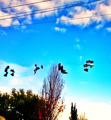 Shoes flying over east van #filtersofdoom #filtersofdestiny (roland) Tags: vancouver shoes eastvan shoesonawire shoefiti n8photo filtersofdoom filtersofdestiny snapseedphoto