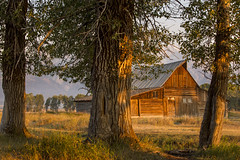 Wyoming 2012034 (kdc123) Tags: nature sunrise canon nationalpark wildlife september yellowstone grandteton 2012 mormonsrow 5dmarkiii