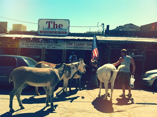 "Historic Route 66 - Oatman, Arizona • <a style=""font-size:0.8em;"" href=""http://www.flickr.com/photos/20810644@N05/8142806527/"" target=""_blank"">View on Flickr</a>"