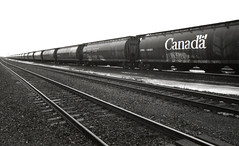 Grain Cars (the factory wall) Tags: canada cars film bay grain rail thunder