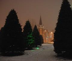 central park (free spirit *) Tags: trees snow bunnies calgary halloween church fog centralpark nightcrawl