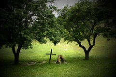 Carpineti (Borongo Gordon) Tags: trees cross prayer lawn altar