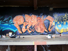 Outdoor Overspray Extraviganzzzaa (ReconSuave) Tags: newyork graffiti rochester syracuse veio sie cws recon motes