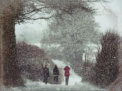 SNOWTIME (lollipoplollipop@home) Tags: