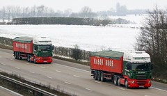 Mason Bros Scania pair (gylesnikki) Tags: red snow green truck potato artic bulker masonbros