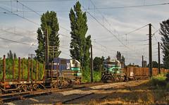 Fepasa, Cruce de Trenes en Santa Fe. (DeutzHumslet) Tags: chile santafe canon tren gm estacion locomotive biobio sx20 locomotoras fepasa emd sdl39 2347 2341 cargueros