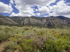 ORNG2073 (David J. Thomas) Tags: humboldtnationalforest forest mountains backroads ely nevada nv travel vacation
