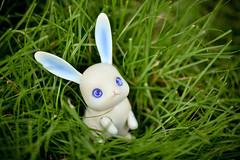 rabbit (Vlastelin Nichego) Tags: rabbit dolls bjd abjd