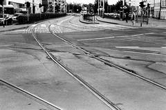 Wroclaw (MCorrigan1983) Tags: film 2016 400tx bw kodaktrix400 nikkor50mmf18d nikonf6 poland wroclaw tramlines