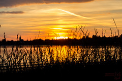 Red evening sky (Bullseye Pictures) Tags: red evening sky sunset sundown afterglow silhouette lake sea canon eos 650d