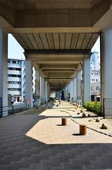 Under Park (pokoroto) Tags: under park  fukuokacity fukuoka   kyushu  japan 8   hachigatsu hazuki leafmonth 2016 28 summer august