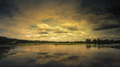 ALLIGATOR LAKE--WHAT REMAINS (Suzanna Mars) Tags: alligatorlake lakecity landscape clouds florida lake summer water