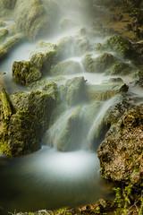 Falling Springs (Tom Whitney Photography) Tags: environment green longexposure mist moss rocks rocky vertical virginia water waterfall falling flowing log misty rock splash