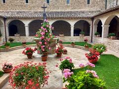 San Damiano  (sofiazandarin) Tags: assisi travel travelling flowers paradise