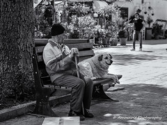 Two Friends (`ARroWCoLT) Tags: streetphotography bnw bnwstreet street sokak adam people arrowcolt samsung nx photography outdoor monochrome blackwhite siyahbeyaz streetshot nx300 istanbul oldman mummy dog friend straydog bench bank adalar heybeliada island bokeh dof trkiye turkey turquie turkie 30mm f2