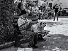 Two Friends (`ARroWCoLT) Tags: streetphotography bnw bnwstreet street sokak adam people arrowcolt samsung nx photography outdoor monochrome blackwhite siyahbeyaz streetshot nx300 istanbul oldman mummy dog friend straydog bench bank adalar heybeliada island bokeh dof türkiye turkey turquie turkie 30mm f2