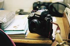 Nikon F5 (Amelien (Fr)) Tags: 2016 400 45mm aml analog argentique believeinfilm c41 capturedonrealfilm contax film kodak pellicule planar portra zeiss filmisnotdead