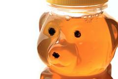 AD8A5687_p_g (thebiblioholic) Tags: honey bear 365 closeup lensbaby velvet56 food