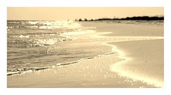 Distant Shores (AlisAquilae) Tags: beach florida vacation throwback archvies ocean waves salt water sand wind sun swimming sepia border new canon canont1i