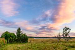 Changing Season (Peter Vestin) Tags: nikondf sigma24mmf14dghsmart siruin3204x siruik30x adobecreativecloudphotography topazlabscompletecollection herrn skattkrr karlstad vrmland sweden vnern nature landscape seascape sunset