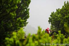 IMG_3419 (The Mitz Photography) Tags: gams grünersee hochschwab mariazell maryclan murmerl mädels nebel pilgern sommer steinbock wandern