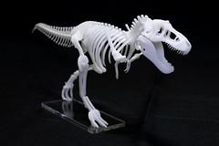 IMG_6880 (Barman76) Tags: bonelab trex tyrannosaur skeleton plastic laser cut