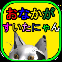I'm hungry - Android apps - Free (jpappsdl) Tags: action actiongame android animal apps bonito bounce cat free hungry imhungry japan japanese jump rotation simple tabby wall