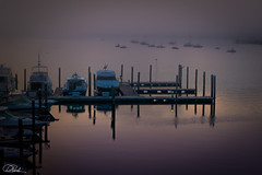 Harbor Sunrise (Dan NYNJ) Tags: sunrise peaceful pier bay newjersey pilings jerseyshore ethereal nikon2470f28 bluehour reflection dawn dreamy golden posts mist fog morning nikond750 harbor beach