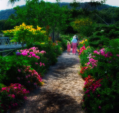 bridge of flowers (David J DeCenzo) Tags: bridgeofflowers shelburnefalls newengland massachusetts