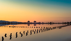 city reflection (robimurgia) Tags: artistic beach beautiful beauty blue calm gold gulf italy marina mountain nature naturephotography ocean orange park peace pond quiet reflection reflections relax sardegna sea silhouette sky sunrise tranquillity travel water