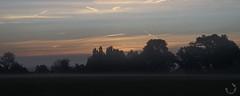 2016_septembre_DSC5748 (brunata61) Tags: paysage levdesoleil brume stouensurmaire sony a58 normandie