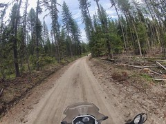 Amazing off-road experience on National Forest Road 1934.  Colville National Forest, WA.