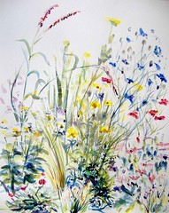 in the garden 2 (Annette Henbery) Tags: pink flowers blue sea summer plants plant flower floral grass yellow pencil painting mixed flora media gardening drawing july thrift bloom watercolour flowering grasses blossoming blooms yarrow achillea coloured planting cornflower blooming moonshine coreopsis sisyrinchium armeria maritima cyanus centaurea lychnis stipa tennuisima leucothemum