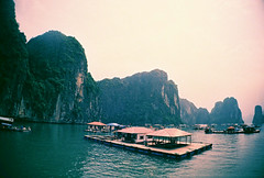 Ha Long Bay Tour (mayrpamintuan) Tags: travel sea vacation sun mountain lake mountains green film tourism nature water rock analog 35mm boats outside outdoors island islands bay boat lomo lca fishing lomography rocks waves tour outdoor weekend horizon lakes peak sunny visit tourist vietnam adventure boating tropical sail analogue float province halong halongbay t64